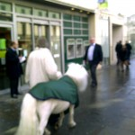 There's a pony. On the Strand.