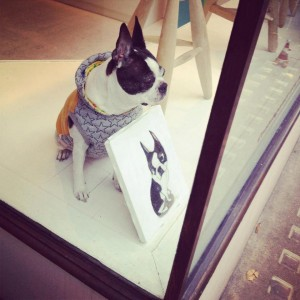 Dogs in Shops: Model Behaviour on Marylebone High Street