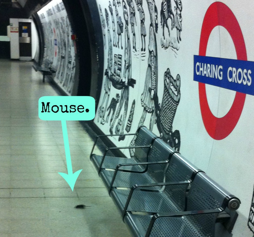 mouse on tube platform