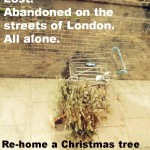 Spotted in Farringdon: Trees in Need of Homes #SaveTheTrees