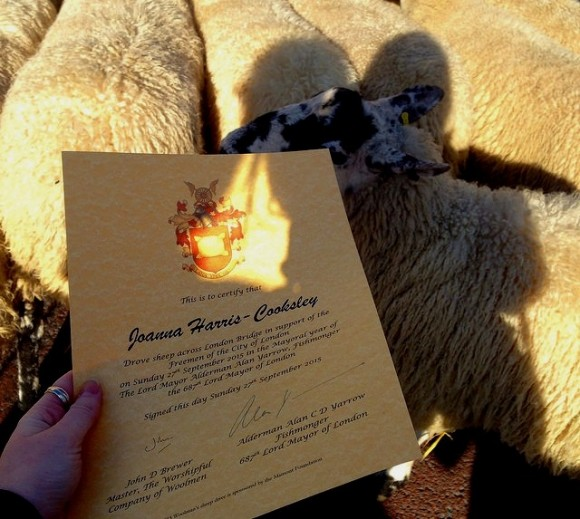 certificate of sheep
