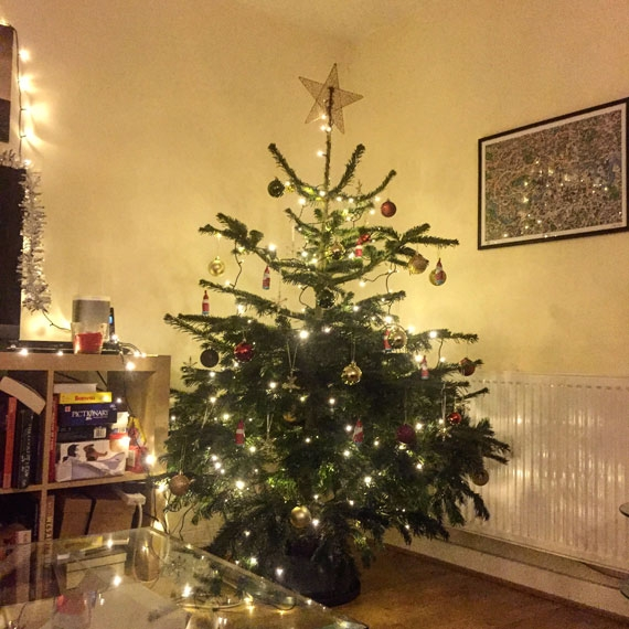 We Got A Christmas Tree For Our Rented Flat And It's The Best Thing Ever